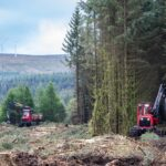 Commercial Forestry Photography